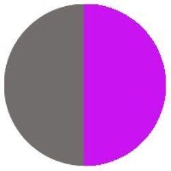 Purple/Grey